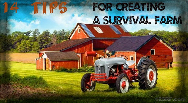 14 Tips For Building a Survival Farm