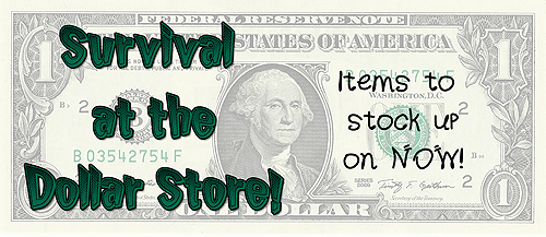 Survival At The Dollar Store