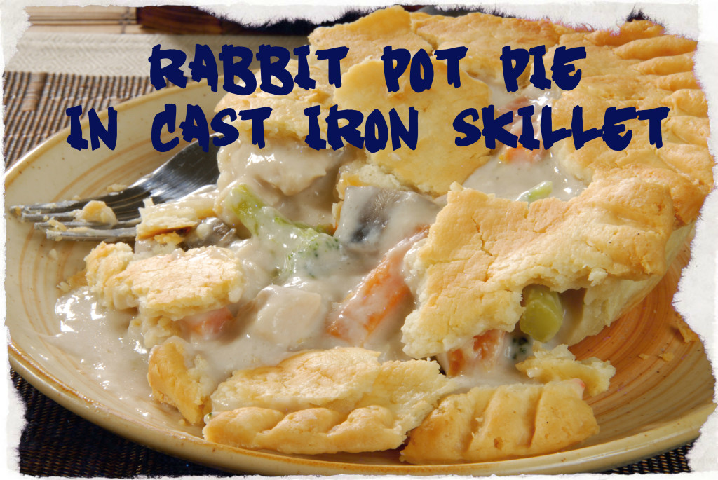 meat rabbit pot pie 2