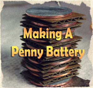 Sustainable: Making A Penny Battery
