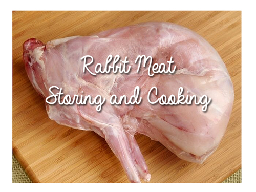 Rabbit Meat Storing and Cooking