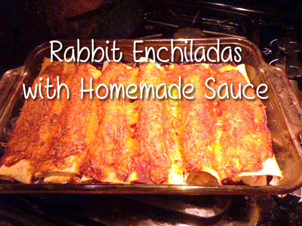 Rabbit Recipe enchiladas