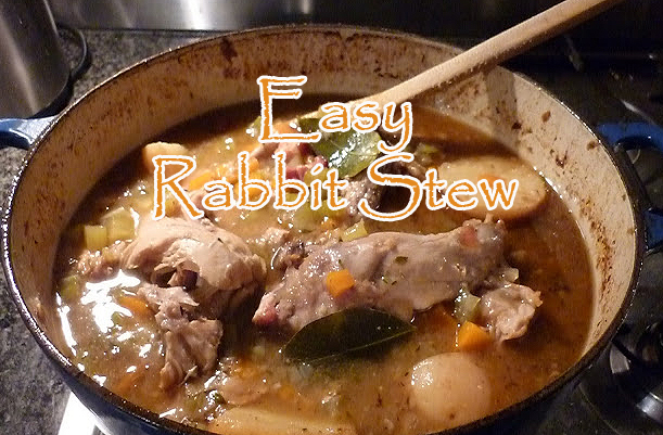 Easy Rabbit Stew