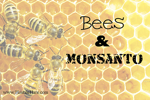 Bees and Monsanto