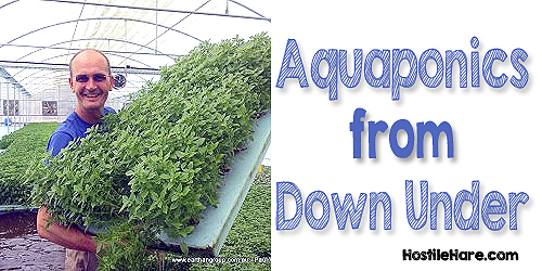 Aquaponics from Down Under
