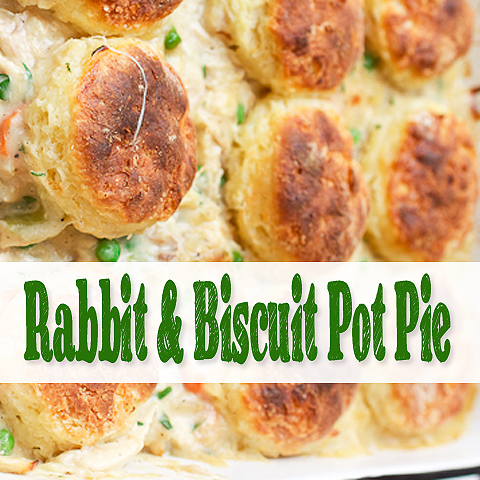 Rabbit and Biscuit Pot Pie