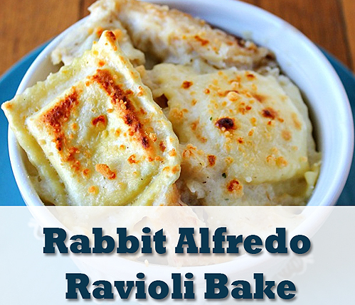 Rabbit Alfredo Ravioli Bake Recipe| via HostileHare.com