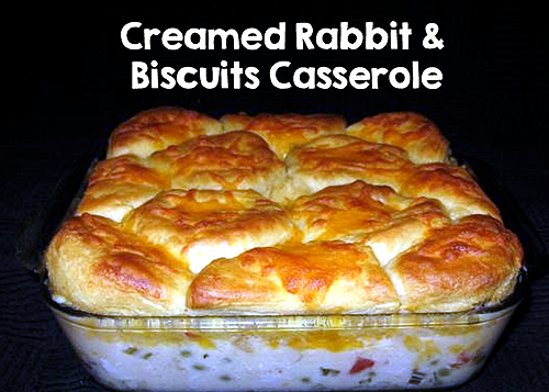 Creamed Rabbit and Biscuit Casserole
