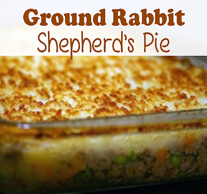 Ground Rabbit Shepherd's Pie Recipe | via HostileHare.com