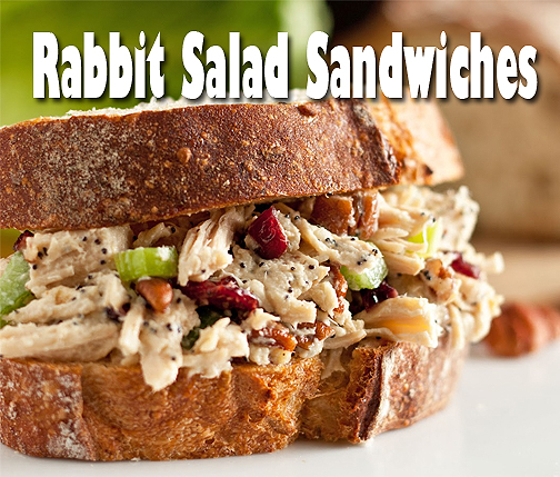 Rabbit Salad Sandwiches