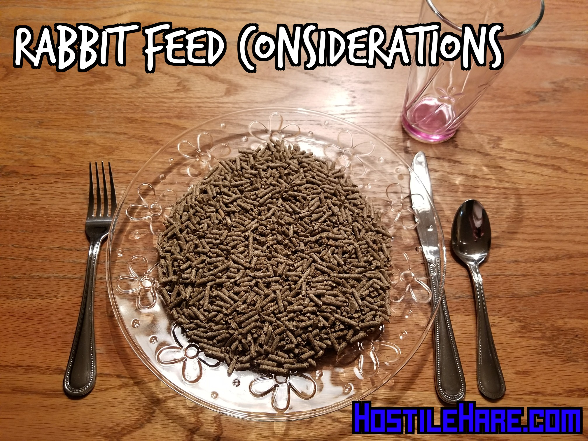 Rabbit Feed Considerations