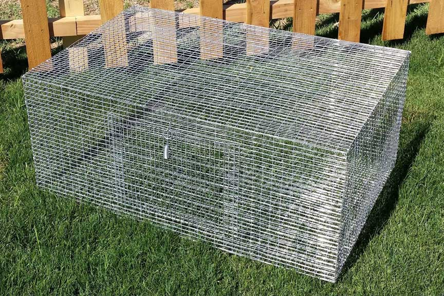 Quality Rabbit and Quail Products