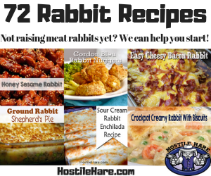 Rabbit Recipe Index
