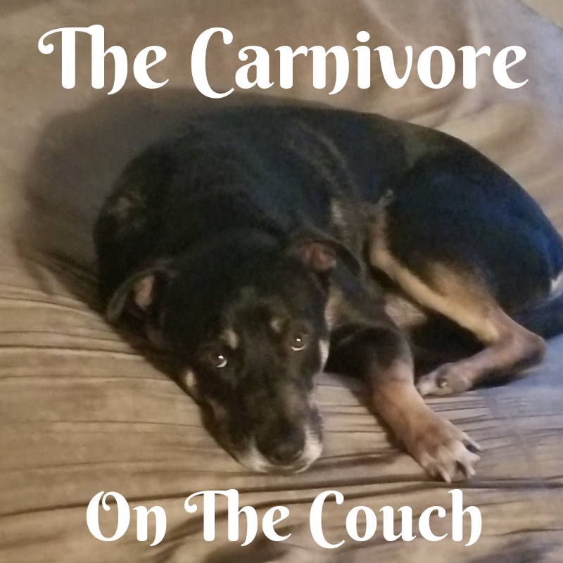 The Carnivore on the Couch: Reasons to feed Raw Pet Food