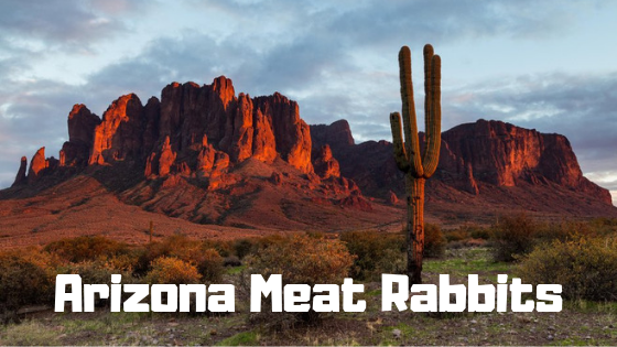 Arizona Meat Rabbits