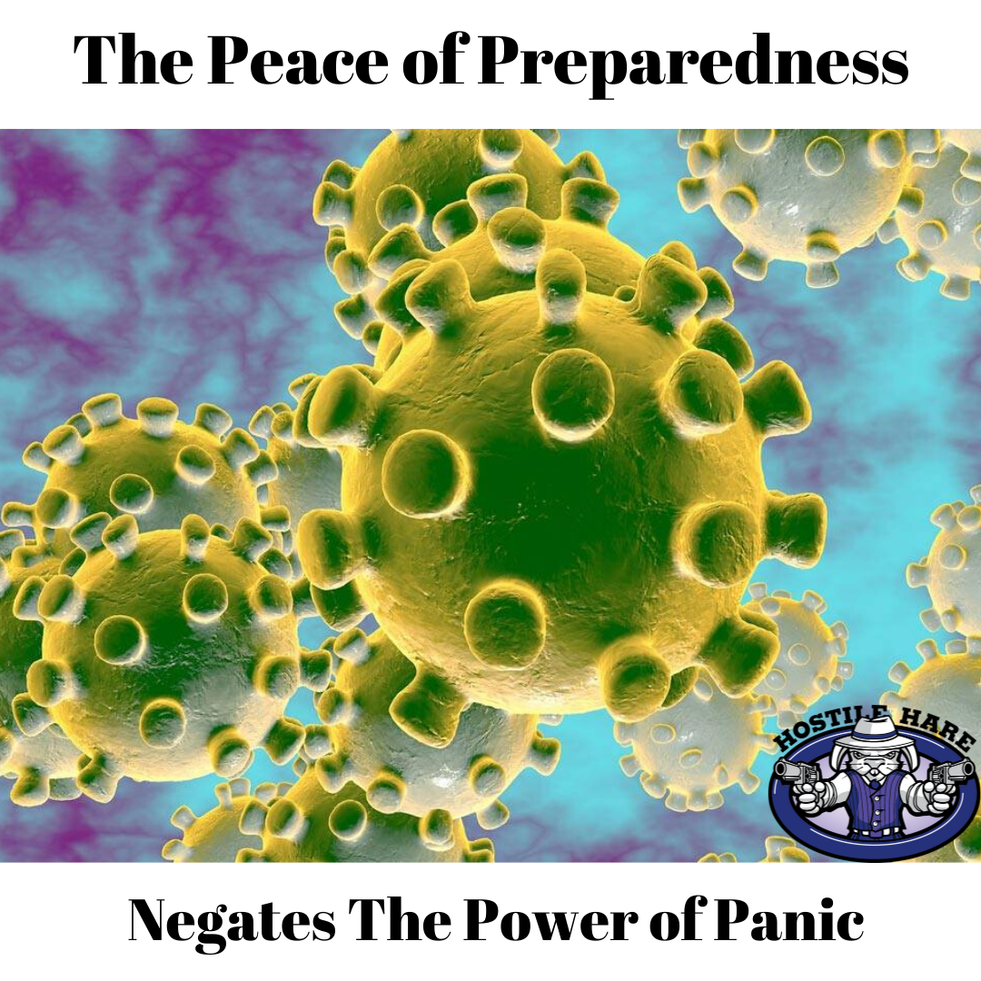 The Peace of Preparedness negates the power of panic. Coronavirus is yet one more panic inducing story fodder source the news uses to scare the population.